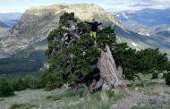 PICO COTIELLA (2912mts.) DESDE REFU SANTA ISABEL. La cara más salvaje y solitaria para el ascenso.